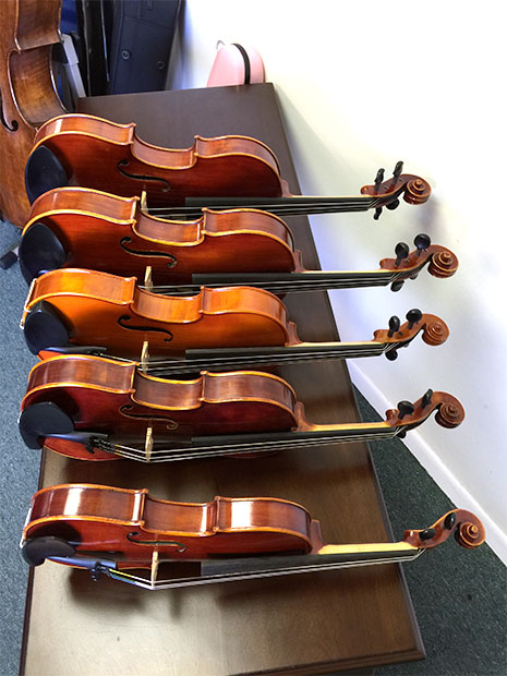 violas for rent: all sizes, standard, advanced models